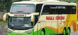 Bus Rembang Jakarta : Jadwal dan Harga Bis Terminal Rembang Jakarta 2021