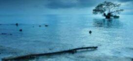 Wisata Rembang: Indahnya Pulau Gede di Rembang